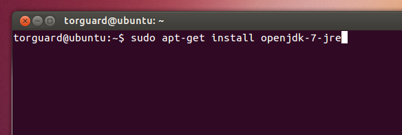 How to setup Torguard OpenVPN in ubuntu |